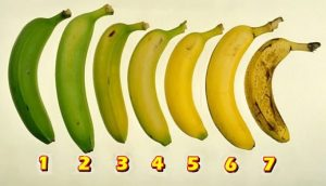 Read more about the article Which Banana Would You Eat? Your Answer May Have An Effect On Your Health