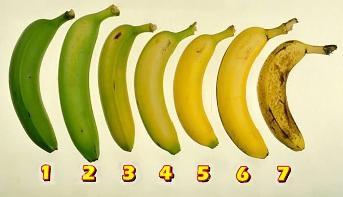 You are currently viewing Which Banana Would You Eat? Your Answer May Have An Effect On Your Health