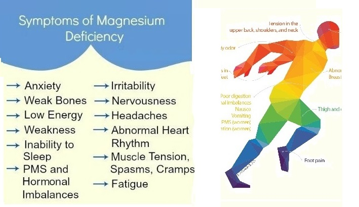 12 Foods Which Increase Magnesium And Prevent High Blood Pressure, Blood Clots And Muscle Fatigue