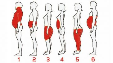 Types of Body Fat