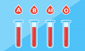 Read more about the article Blood Type Diet: What to Eat and Avoid According to Your Blood Type?