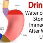 Water On An Empty Stomach