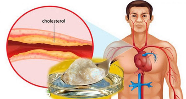 You are currently viewing The Best Medicine Against Cholesterol And High Blood Pressure