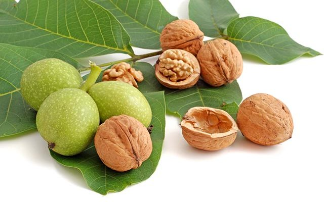 Walnuts Contain 4 To 15x More Vitamin E Than Other Nuts