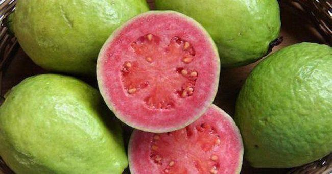 Guava Contains 4x More Vitamin C Than An Orange, And 10x More Vitamin A Than A Lemon