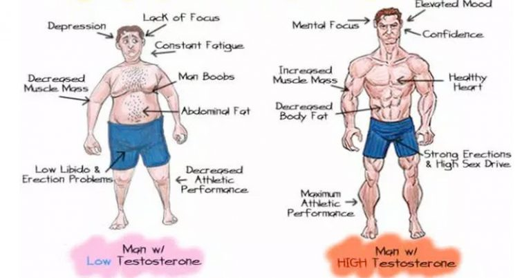 5 Natural Ways To Fix Low-Testosterone For Increased Libido and Weight Loss