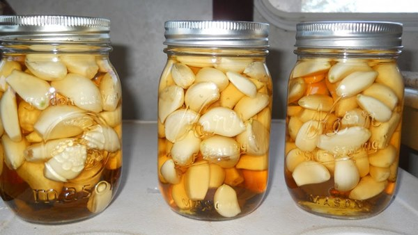 Garlic, ACV And Honey – The Winning Combo For Defeating Cholesterol, Obesity, Indigestion And Many Other