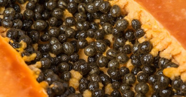 You are currently viewing How To Eat Papaya Seeds To Detoxify Liver, Kidneys And Heal Digestive Tract