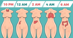 Read more about the article Why You're Waking Up At The Same Time Every Night