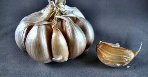 Read more about the article Garlic Proven 100 Times More Effective Than Antibiotics, Working In A Fraction of The Time
